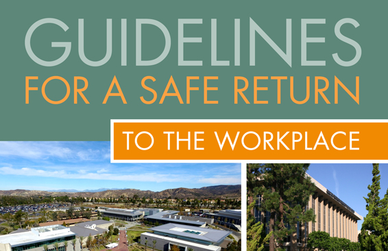Guidelines For a Safe Return to the Workplace